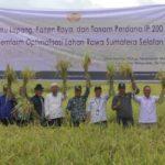 Foto, Panen Raya dan Tanam Perdana IP 200 di Demfarm Sumatra Selatan