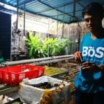 Foto : Petani Muda Milenial Yang Tergabung dalam Bali Organik Subak (BOS)