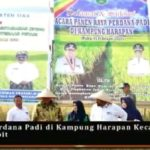 Foto. Panen Perdana Padi Gogo di Kabupaten Siak
