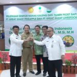 Foto: Acara Pelepasan Ekspor Nanas Kaleng dan Panen Pedet Sapi PT Great Giant Pineapple dan PT Great Giant Livestock di Lampung