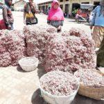 Foto: Hasil Produksi Bawang Merah