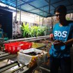 Foto: Petani Muda Milenial Keren