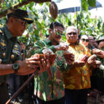 Foto : Menteri Pertanian Syahrul Yasin Limpo Saat Melakukan Kunjungan ke Perkebunan