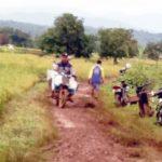 Foto : Para Petani yang Membawa Hasil Panen Raya