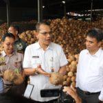 Foto : Kepala Badan Karantina Pertanian (Barantan) Saat Memeriksa Kelapa Parut Asal Provinsi Sumatera Utara
