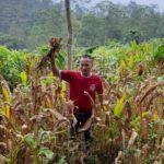 Foto : Tony Fajar yang Menjadi Petani Rimpang Sekaligus Pengusaha dengan Omzet Jutaan Rupiah