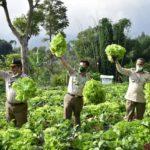 Foto : Menteri Pertanian Syahrul Yasin Limpo Saat Berkunjung Ke Pekarangan Pangan Lestari (P2L) KWT Binama Desa Cibodas, Kabupaten Bandung Barat, Jawa Barat.